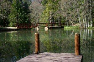 Crystal Falls Pond
